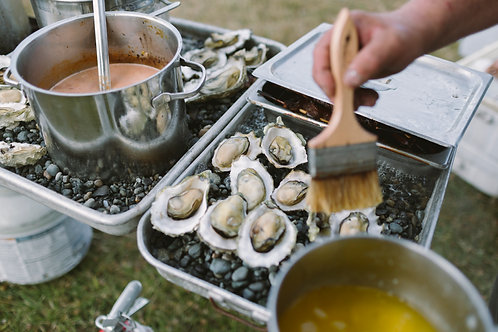 Live Pacific Oysters (Medium Bakers)