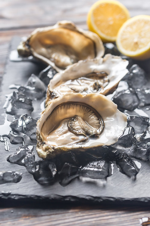 Live Pacific Oysters (Shooter Size)
