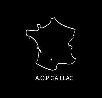 carte situant Gaillac