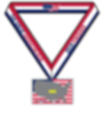 GAR Double Medal 2019 Final.png