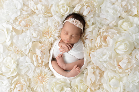 Newborn baby girl surrounded by white and cream flowers in a white wrap and headband by Vancouver newborn photographer Amber Theresa Photography