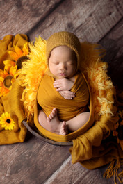 Newborn baby boy in a mustard yellow wrap and knitted bonnet laying in a wood bucket surrounded by sunflowers by Vancouver newborn photographer Amber Theresa Photography