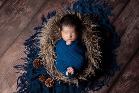 Newborn baby boy in a dark teal wrap with toes and fingers peeking out in a brown fur basket surrounded by pinecones by Vancouver newborn photographer Amber Theresa Photography