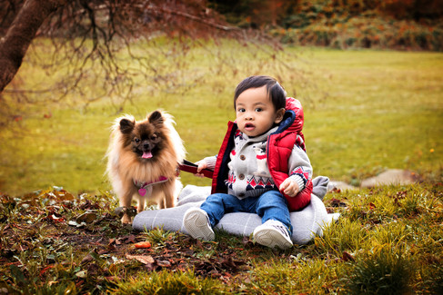 1 year old toddler and dog sitting in the grass at Queen Elizabeth Park by Vancouver family photographer Amber Theresa Photography.