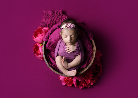 Newborn baby girl in a mauve wrap and headband posed in a brown bucket on a raspberry pink backdrop by Vancouver newborn photographer Amber Theresa Photography