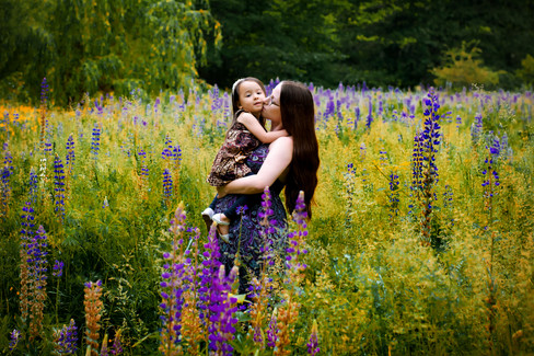 Mother holding 2.5 year old daughter in a field of lupine flowers in Vancouver
