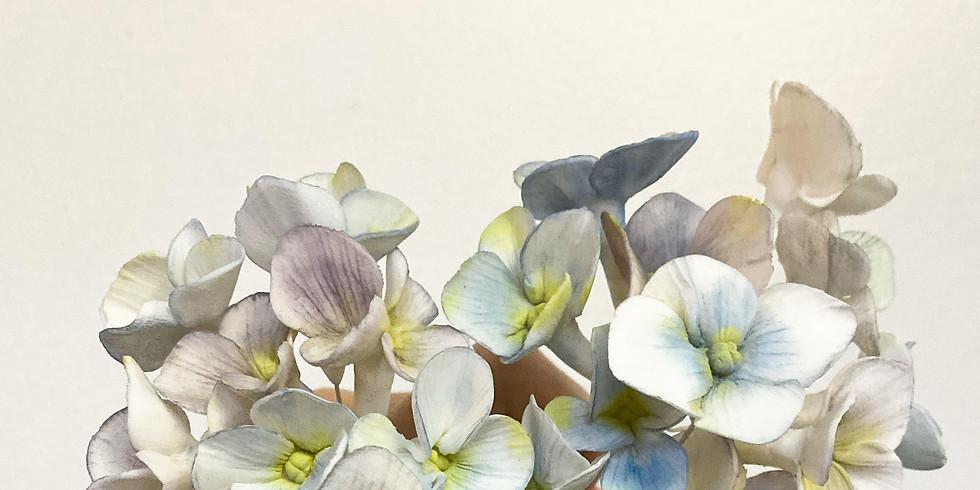 Level 4: Sugar Flowers-Hydrangea