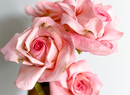 How to Make Sugar Flowers: Gum Paste Rose Tutorial