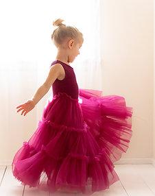 Sugar Plum Fairy Girls Dress