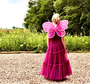 Hot Pink Plum Fairy Wings