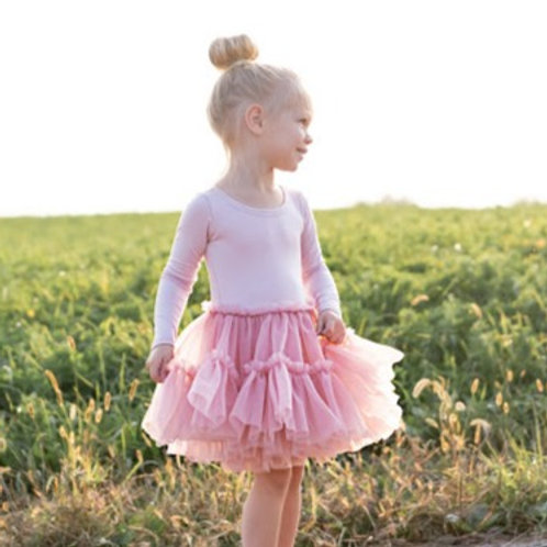 The Alice Dust Pink Tutu Dress