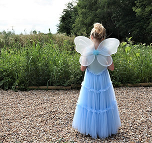 Blue and White Fairy Wings