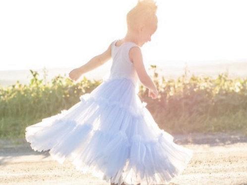 The Lena Twirl Dress in Frozen Blue