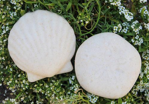 Seashell & Sand Dollar Soap