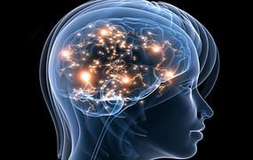Autisme een evolutionaire stap?