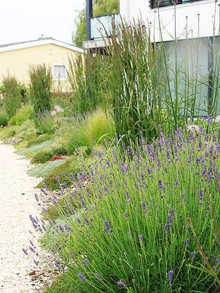 Balanced Garden Kiesrabatte