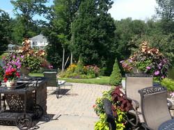 summer patio flowers