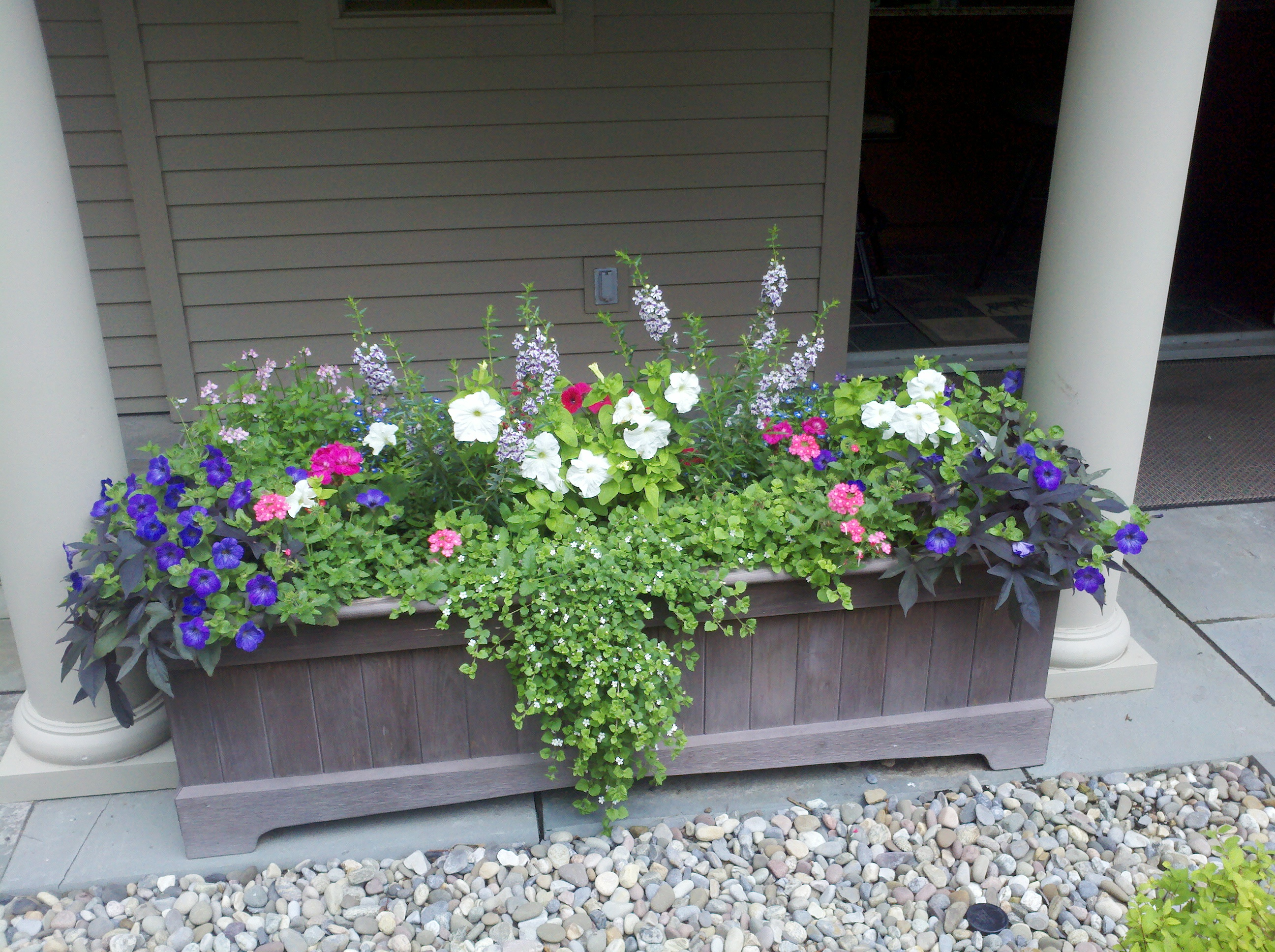 planters filled with annuals