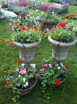 matching planters & hanging baskets