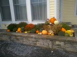raised bed with fall flowers