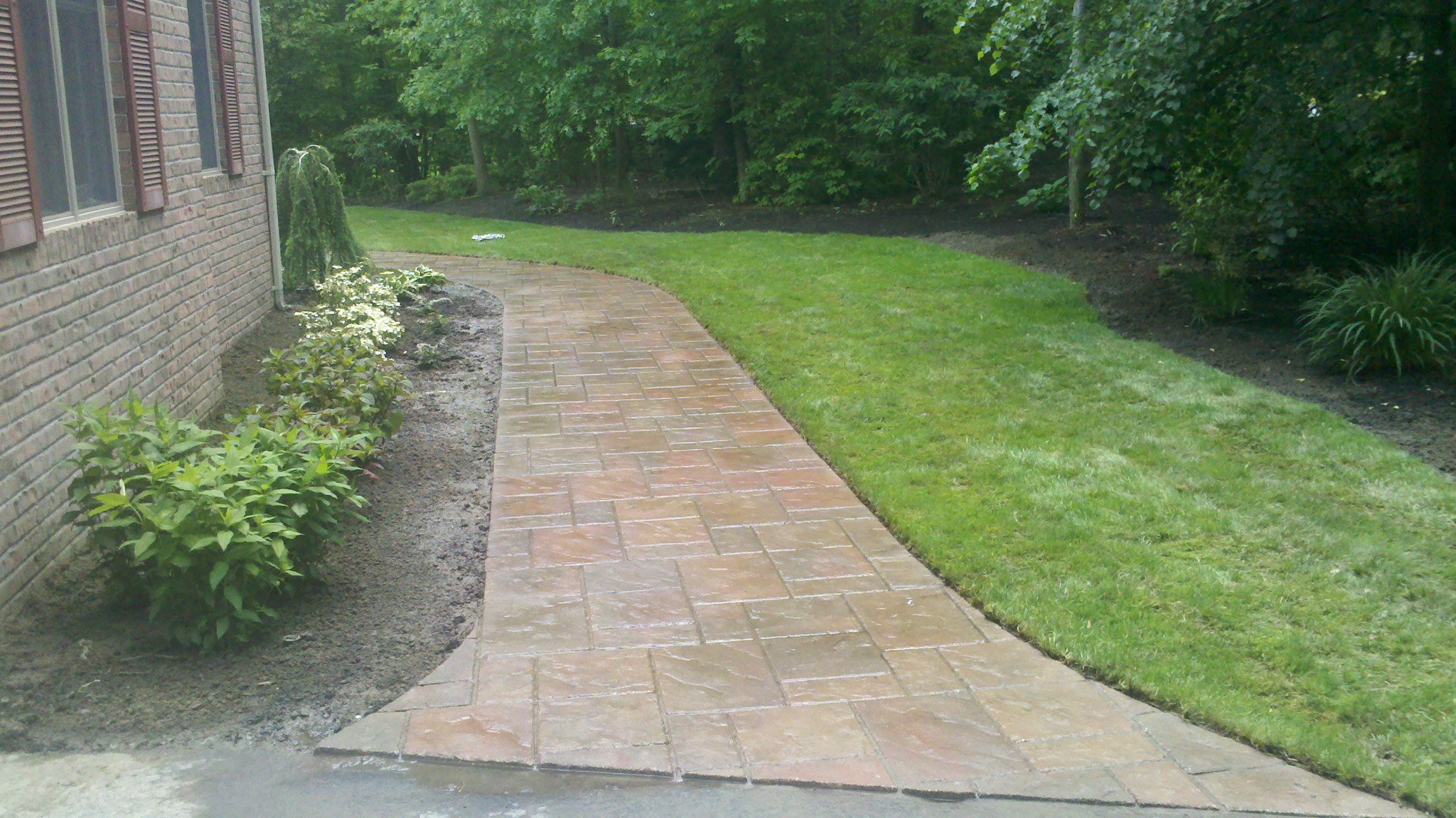 Walkways and Sod