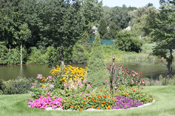 small mixed color bed