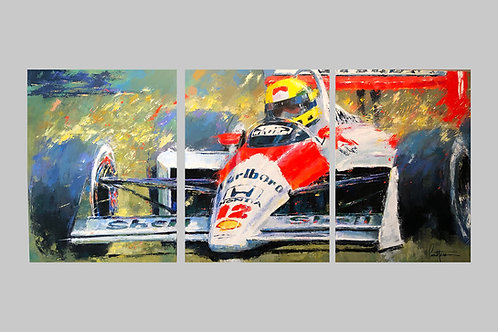 Senna Triptych - Giclee on Canvas