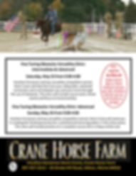 2019 May 25 and 26 Fine Obstacles Clinic