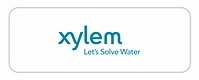 Xylem.png