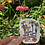 Thumbnail: Sticker - Bloom Where You're Planted