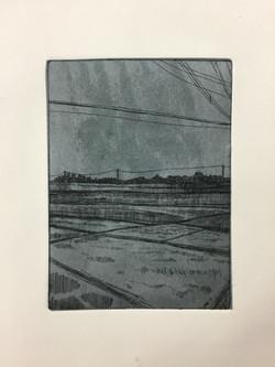 Rice Field Dreams