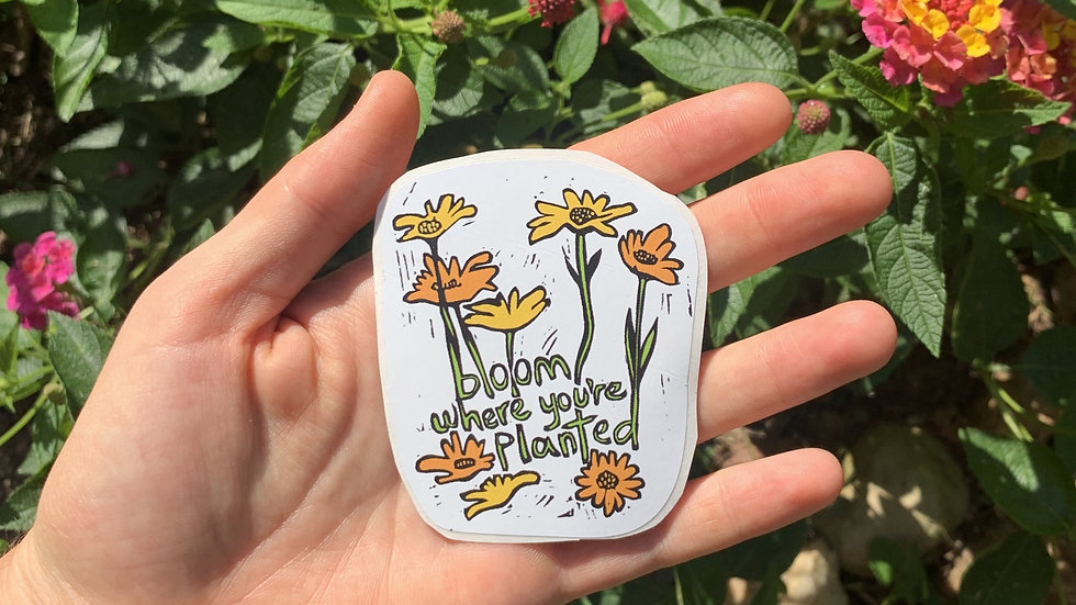 Sticker - Bloom Where You're Planted