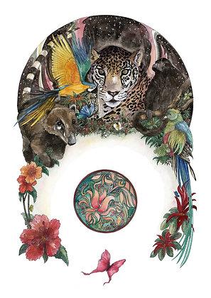 26 - Jaguar