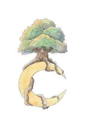 21 - Arbre Lune