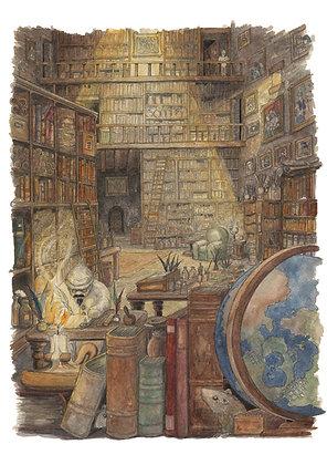 28 - Bibliothèque