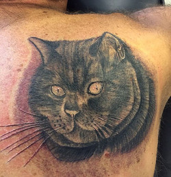 Tattoo of Jimmy on his owners back