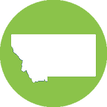 Green Montana State Icon.png