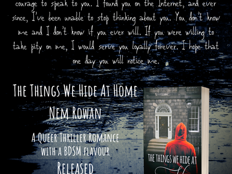THE THINGS WE HIDE AT HOME release blitz!
