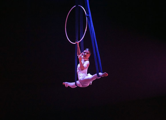 The Aerialist - Digital Download