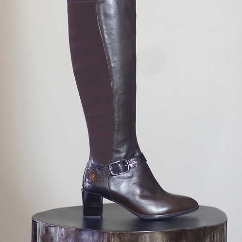 W20 Import Rita R10 Boot