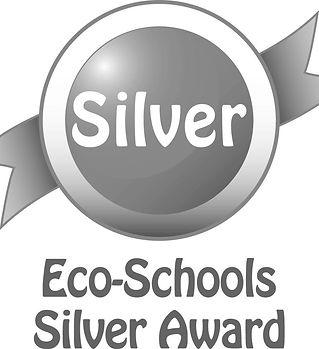 Eco-Schools Silver Award Logo.jpg
