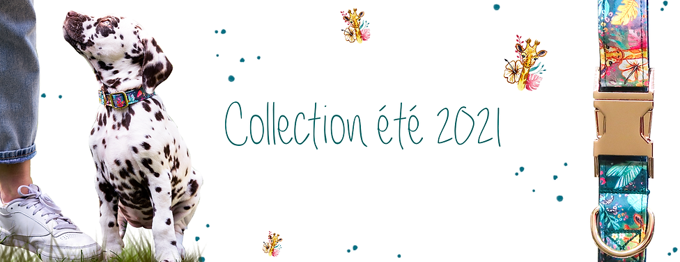 Collection été 2021 banner.png