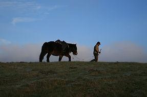 jazda konna, naturalne jeździectwo