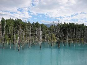 1白金青い池.JPG