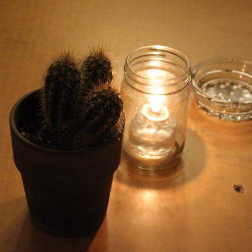 Stronger Cactus.jpg