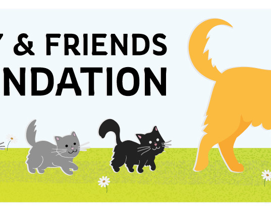 Lucy & Friends Foundation Logo - Rectang