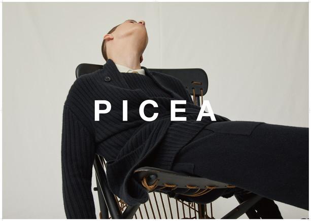 PICEA-20AW-B0-3.jpg