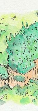 orinoquia 3-crop-u12491.jpg