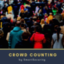 crowd counting (1).png