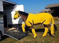 Iron Horse 04 WEB.jpg